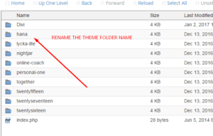 Reneme the Theme Folder